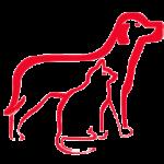 Корма для собак и кошек